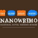 5 motivos para participar en el NaNoWriMo