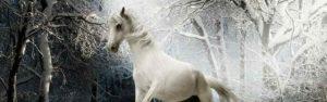 fantasía literatura fantástica cuentos de hadas